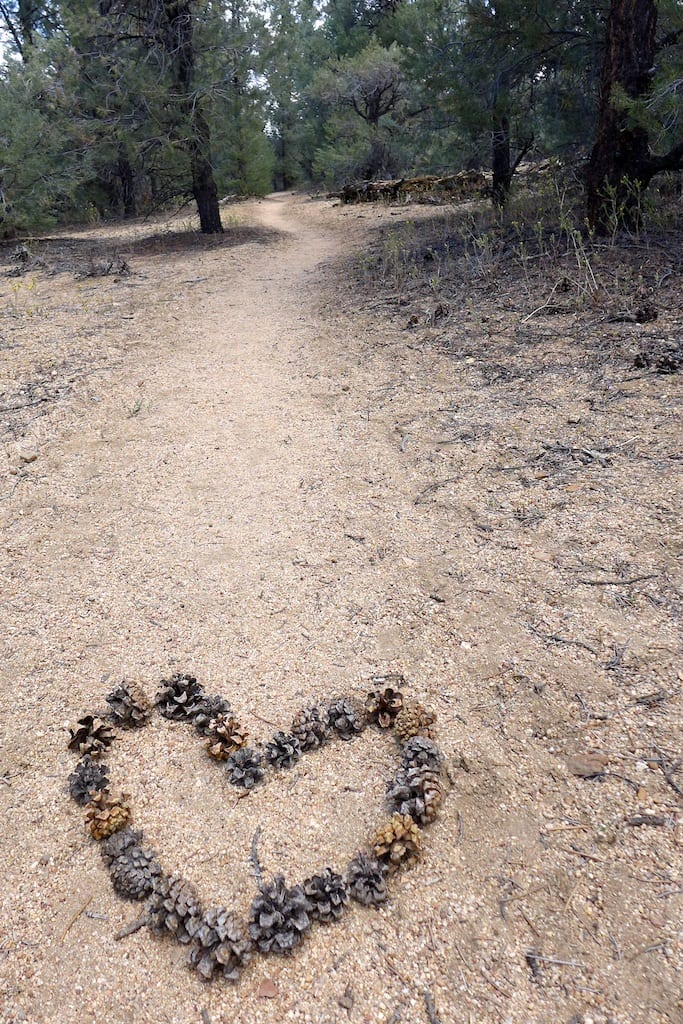 Pacific Crest Trail LOVE