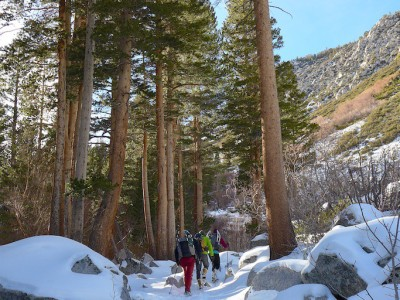 Eastern Sierra Winter Adventure to Palisades and Arches