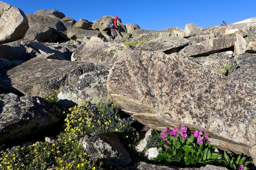 Boulder Hopping up Wind River Peak ~ Why Not
